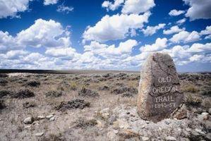 Plantes menacées des prairies tempérées