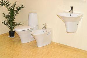 Bonnes plantes pour salles de bains