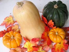 Comment planter Acorn Squash Seeds