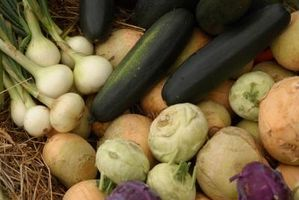 Quand planter des légumes en Pennsylvanie?