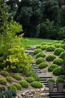Les meilleures idées d'aménagement paysager