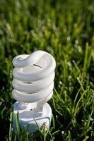 Que Puissance Fluorescent Lumières devrais-je utiliser pour les plantes?
