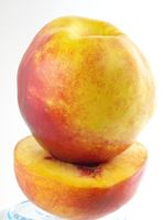 Contrôle Peach Tree Borer