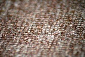 Comment tuer les insectes dans les tapis