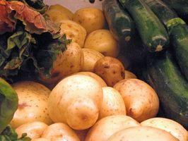 Comment planter des légumes mai en Floride