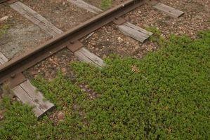 Railroad Ties sont sûres pour les jardins?