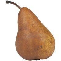 Pourquoi est-ce une partie de mon Pear Tree Die?
