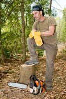 Moyens faciles pour brûler une souche d'arbre