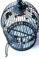 Comment faire une cage à oiseaux Lumière