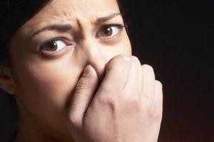 Va utiliser un déshumidificateur Faire une odeur de sous-sol Mieux?