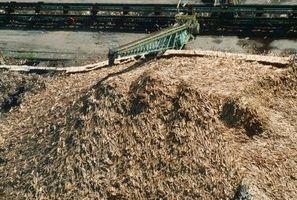 Problèmes d'utilisation de Maple Tree Chips & paillis