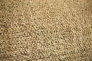 La meilleure méthode pour nettoyer un tapis berbère