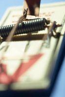 Comment faire une machine de Piège électrique