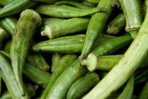 Où est gombo cultivé dans les États-Unis?
