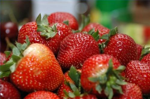 Qu'est-ce sol est bon pour les fraises?