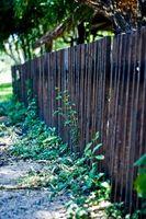 Idées pour clôture Designs