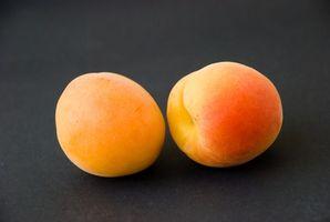 Abricotier engrais