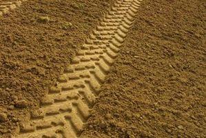 Problèmes de plante avec Brown croûte sur sol
