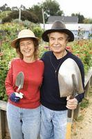 Jardiniers & Paysagistes Outils