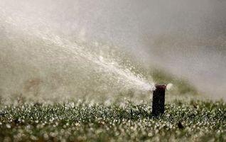 Comment Ne Lawn Sprinkler drains fonctionnent-ils?