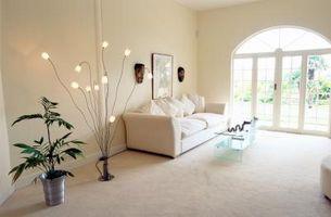 Comment se débarrasser des moucherons champignons Plantes d'appartement