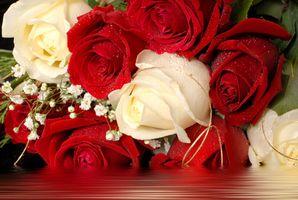 Fleurs Cette unité Mean