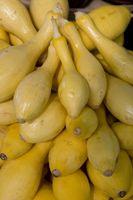 Comment stocker Yellow Squash Du Jardin