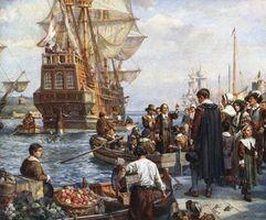 Qu'est-ce qu'un Fleur Mayflower?