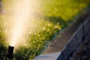 Comment garniture autour d'une Sprinkler