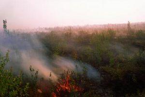 Bonnes choses au sujet des Prairies combustion