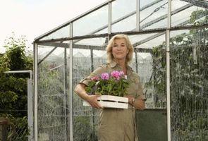 Comment faire pousser un jardin dans une serre
