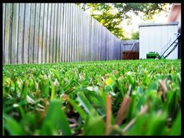Que devez-vous faire pour démarrer une entreprise de soins de la pelouse?