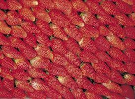 Peut Strawberry Tops Aller dans une élimination des ordures?