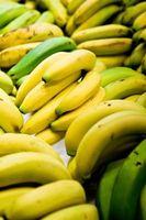 Faits intéressants au sujet Plantes Banana