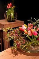 Êtes-vous Coupez les feuilles d'un Tulip avant de le mettre dans un vase?