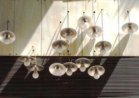 Types d'ampoules à cultiver des plantes