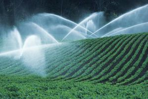 Comment mesurer ET pour l'irrigation