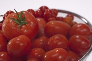 Tomates et Miracle-Gro