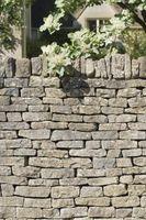 Comment se débarrasser des murs de soutènement