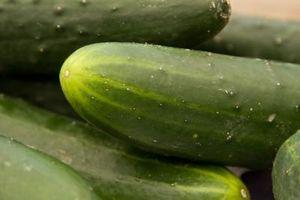Pourquoi mes plants de concombre vert clair Au lieu d'un vert foncé sain?