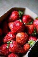 Que font les fraises poussent dans?